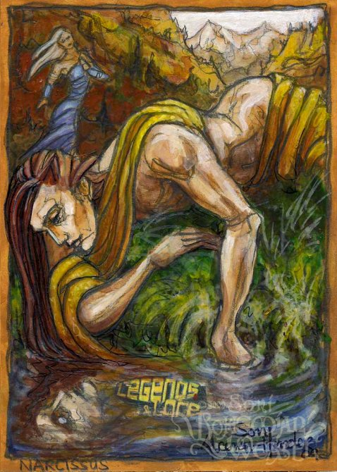 Narcissus by Soni Alcorn-Hender