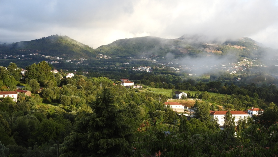 View of Northern Portugal by Soni Alcorn-Hender